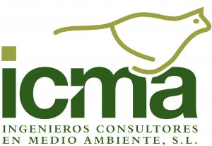ICMA2011