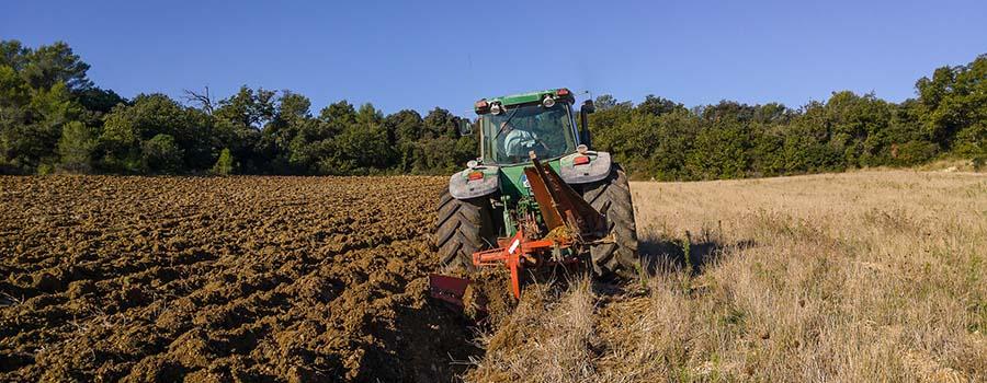 trabajos agricolas